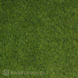 Искусственная трава Irene 25 mm