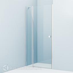 Душевая дверь Iddis Ray RAY6CP0i69 100 см