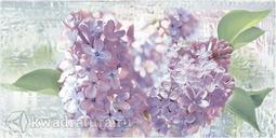 Декор для настенной плитки Alma Ceramica Сирио DWU09SIR103 24,9*50 см