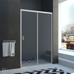 Душевая дверь Veconi VN46-110-01-19C1 110 см